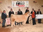 4 Fourth Overall Steer