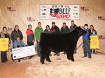 5 Fifth Overall Steer
