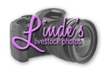 linde-logo_with-camera_03-24-2021-52.jpg