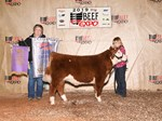 Res MiniHerf Steer
